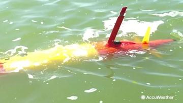 Underwater robots on patrol in Lake Erie