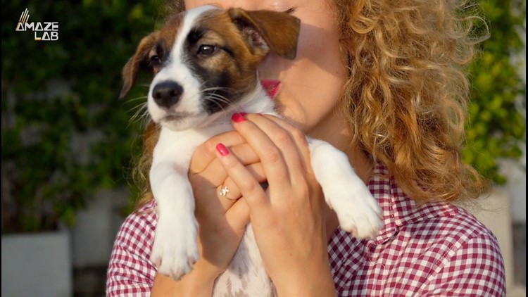 So Cute You Could Eat It Up? The Science Behind 'Cute Aggression'