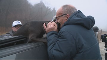 'You made my week, my year, my life' | Dog who ran from deadly Missouri crash reunites with owner