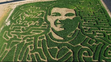 Modesto corn maze dedicated to slain Newman police Cpl. Singh