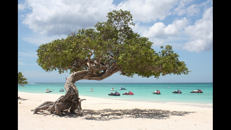 Eagle Beach in Aruba. (Photo by Marc Boettinger/Getty Images)