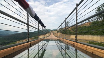 Need to Know: I crossed Gatlinburg's new SkyBridge, didn't soil myself, & lived to answer your questions