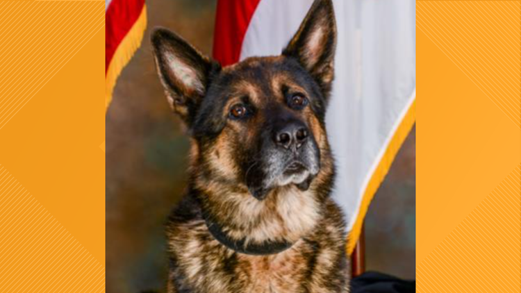 Gaston County Police mourning the loss of beloved retired police K9