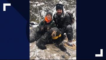 Bear cub orphan gets a new mom