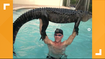 Florida man plucks 9-foot gator from pool with his bare hands after 'playing around' with it to tire it out