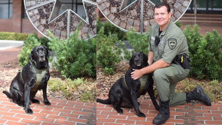 Florida sheriff's office remembers K-9 Triton