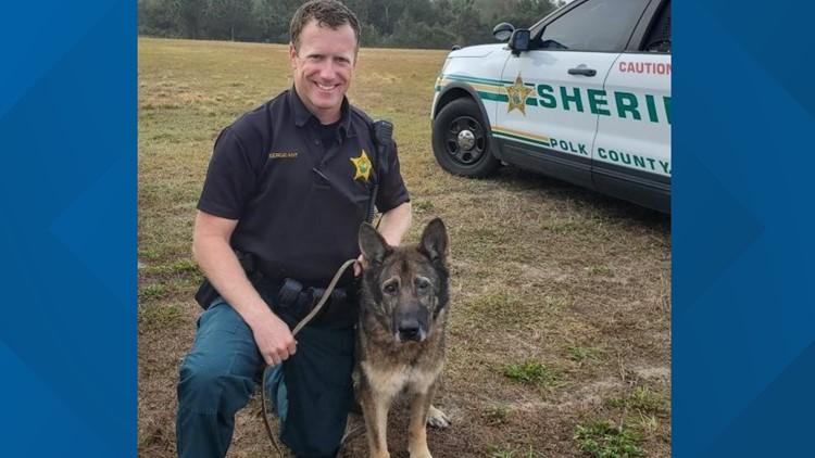 Retired Polk County Sheriff's Office K-9 dies
