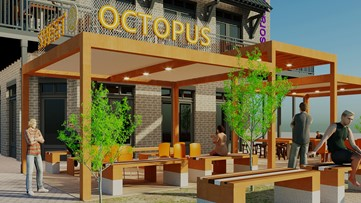 Duluth lands mini Asian food hall – Sweet Octopus