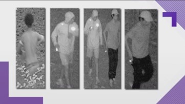Jogger robbed, stabbed at Gwinnett park, police say