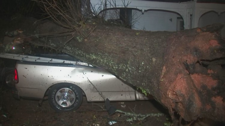 Photos   Newnan storm damage