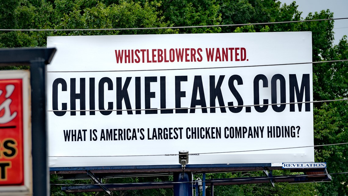 Animal advocacy group targets Georgia poultry industry with new billboard campaign
