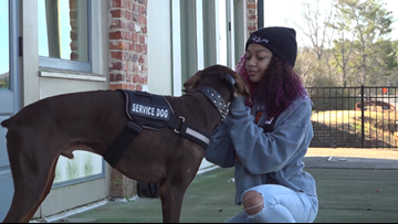 Forsyth County middle school victim of cyberbullying uses service dog to cope
