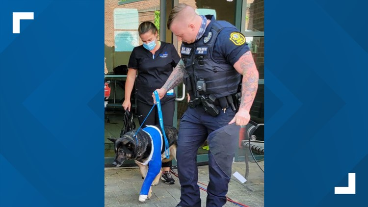 Austell K9 officer to live 'life of luxury' after being shot, forced to retire