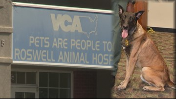 Law enforcement K-9 attacks vet tech in Roswell
