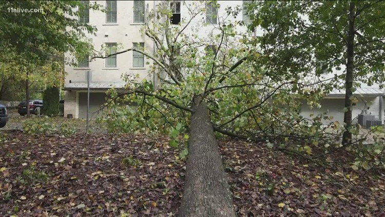 Tree falls onto condo in Roswell
