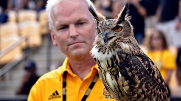 Kennesaw State loses beloved owl to contract dispute