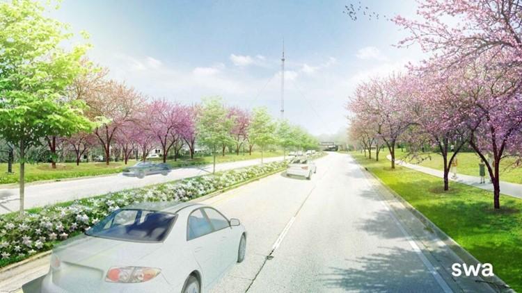 Flowering tribute to honor John Lewis being created in Freedom Park