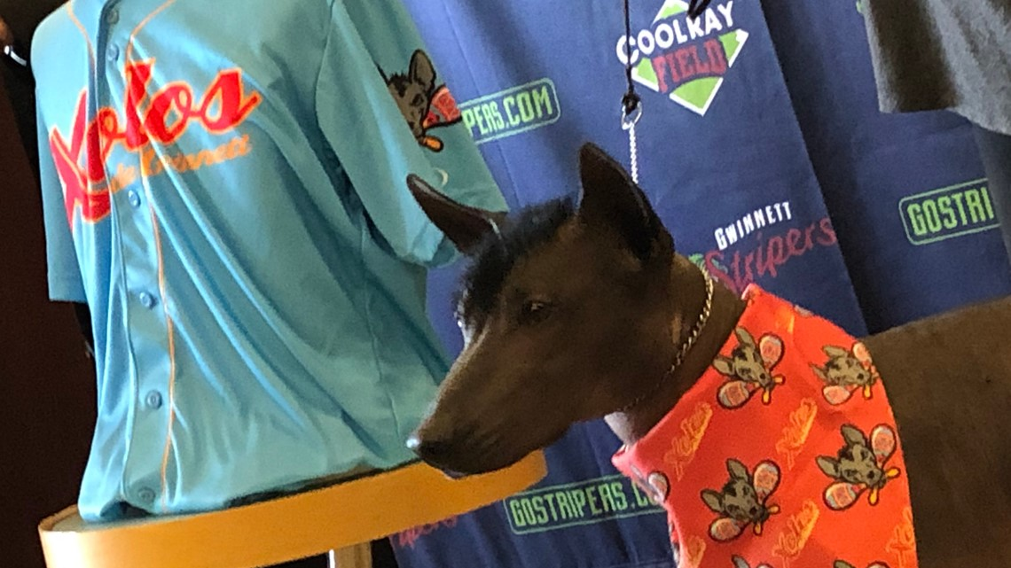 Gwinnett Stripers to become the Xolos for four 2019 games