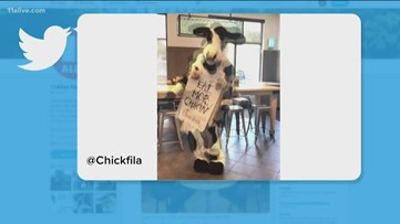 Cow Appreciation Day at Chick-fil-A