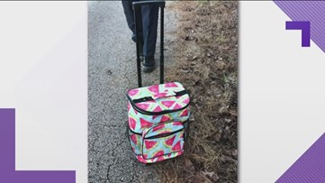 Newnan teen charged with murder after leaving dead newborn in cooler on side of road
