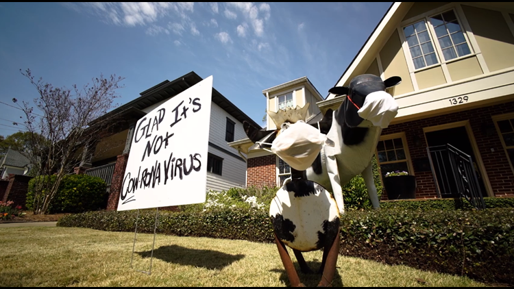 Keeping others a-moo-sed: Woman's cow displays bring joy during COVID-19