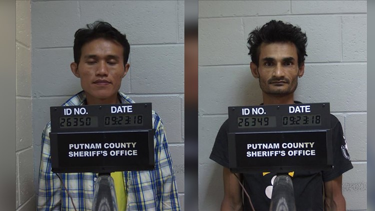 Poachers arrested for shooting deer from hood of car in B F