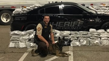 Troup Co. K-9 dies after battle with illnesses