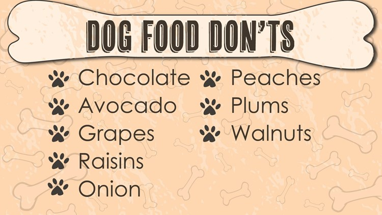 DogDay_Nov1_DogFoodDonts-01_1541100596491.jpg
