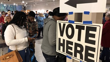 Voters stand in long lines across Georgia to cast ballots