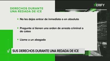 VERIFY: Conozca sus derechos durante una redada de ICE