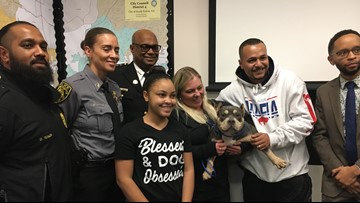 Stolen show dog reunited with owners