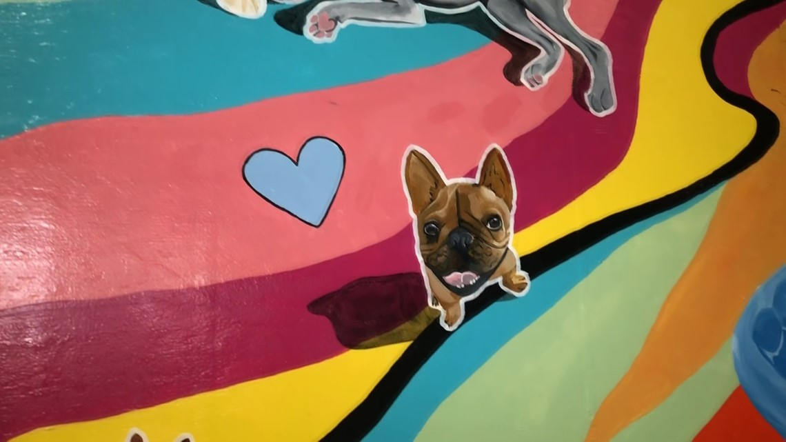 Cumming dog daycare gives college scholarships through puppies and paint