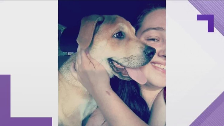 Family canvasses Georgia town for support dog lost in car crash
