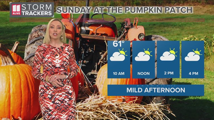 Weekend Forecast: cool mornings, bright and mild afternoons