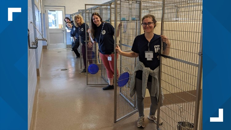 Nearly every cage empty for first time since LifeLine began operating in Fulton, DeKalb