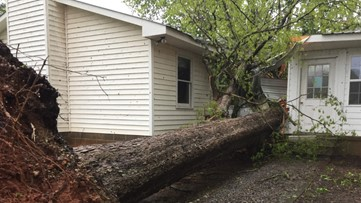 Tree falls on Hall County church, but Easter service is still on