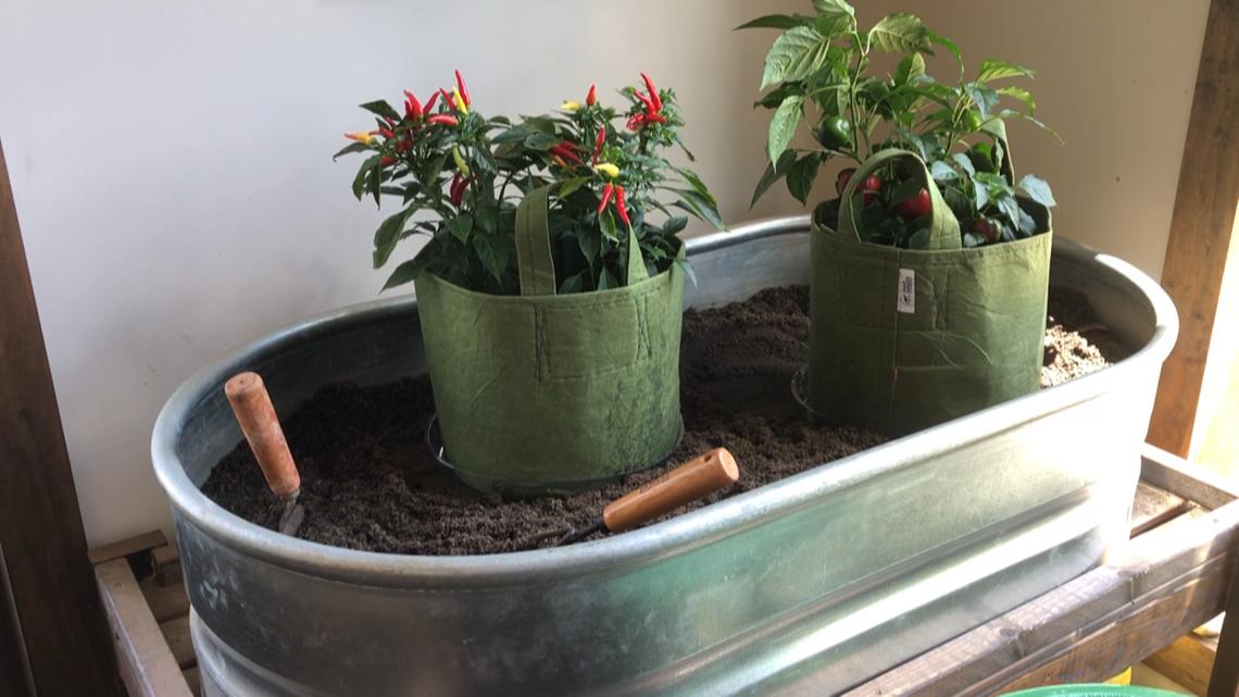 Georgia-based compost company grows fresh fundraising idea