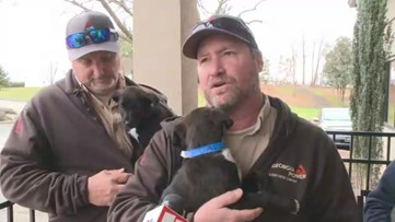 Puppies rescued from dumpster, Georgia Power lineman take them to Humane Society