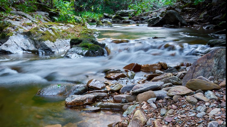 Watersheds: Why it's important to keep your local creek unpolluted
