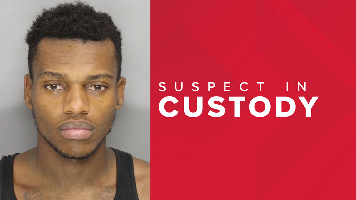 Man wanted for damaging police cars, burglary captured when stopped for jaywalking