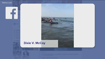 Video shows around 20 pilot whales beached on St. Simons Island: WOW Moment