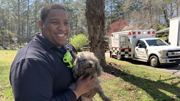 Firefighter saves dog's life with CPR after fire