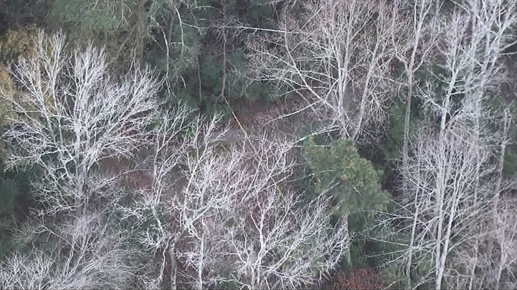 Woman's body found in DeKalb County neighborhood