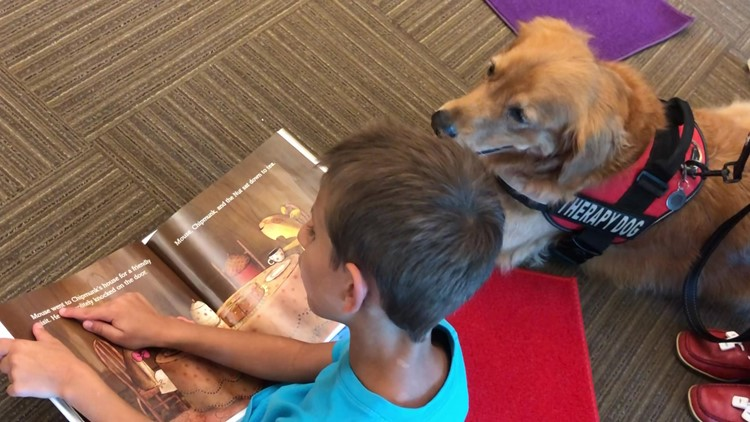 Children 'paws' to read with therapy dogs