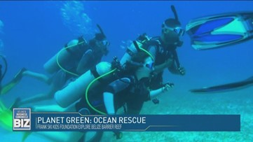 Planet Green: Ocean Rescue