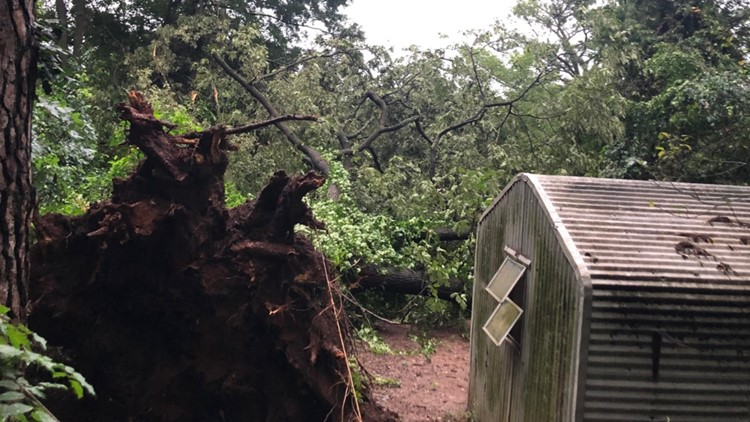 Massive tree topples over at East Point home piercing window, causing roof damage