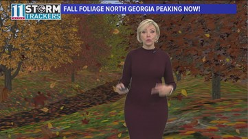 Evening forecast for November 2, 2018