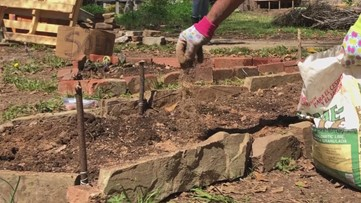 EAV resident brings their dream of a community garden to fruition