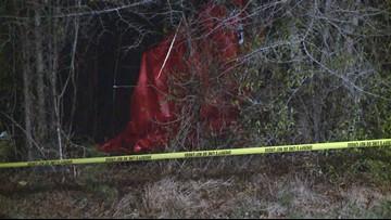 Deadly plane crash kills 2 in Coweta County