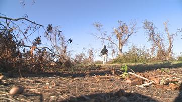 Hurricane Michael destroys 6-decade old pecan farm